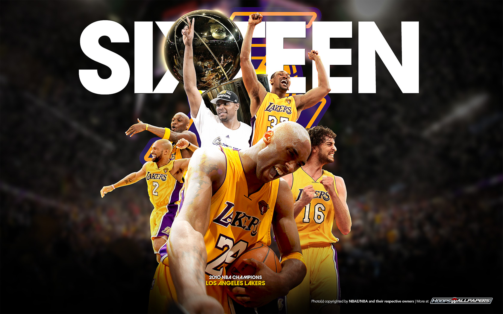 NBA Champions Wallpaper 1920x1200
